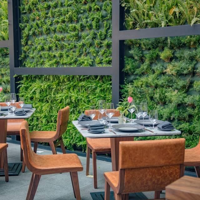 Alfredo Di Roma Polanco Restaurant México Cdmx Opentable