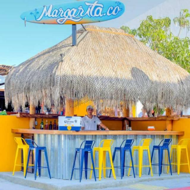 Margarita Co, Cabo San Lucas, BCS
