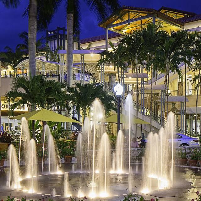 Merrick park fountain - Sawa, Coral Gables, FL