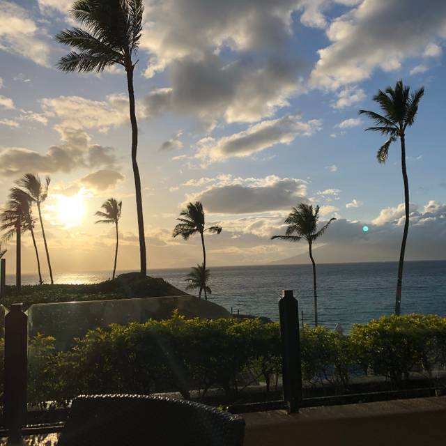 Wolfgang Puck's Spago in the Four Seasons Resort Maui, Wailea, HI