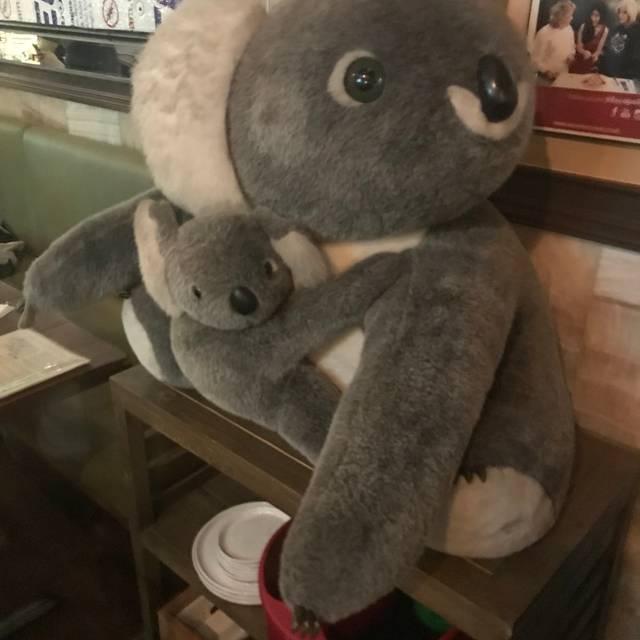 The Thirsty Koala, Astoria, NY