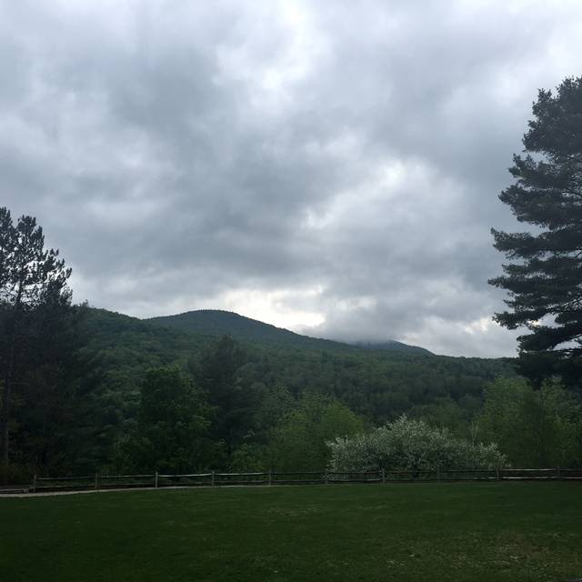 Flannel, Stowe, VT