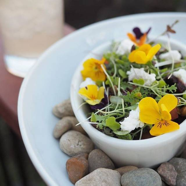 Flower Salad - Homestead on the Roof, Chicago, IL