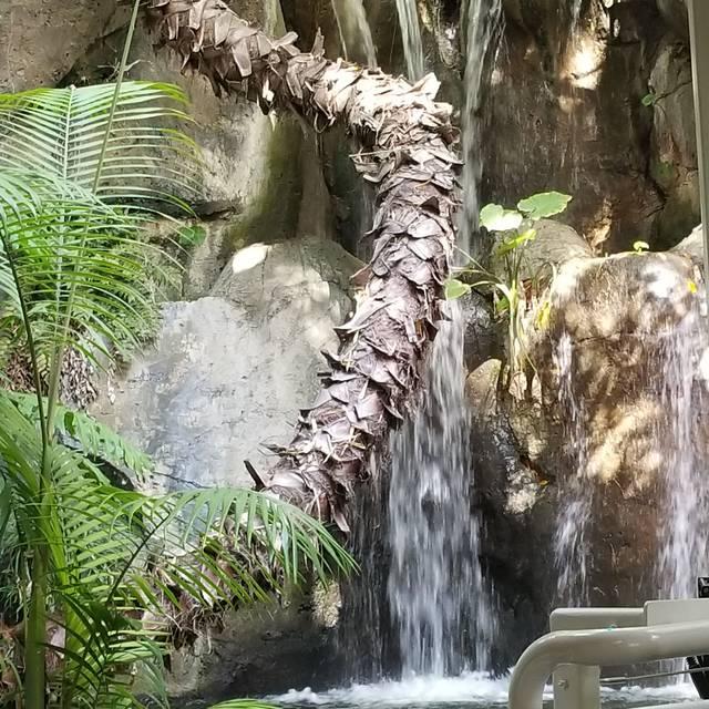 Albert's Restaurant - San Diego Zoo, San Diego, CA