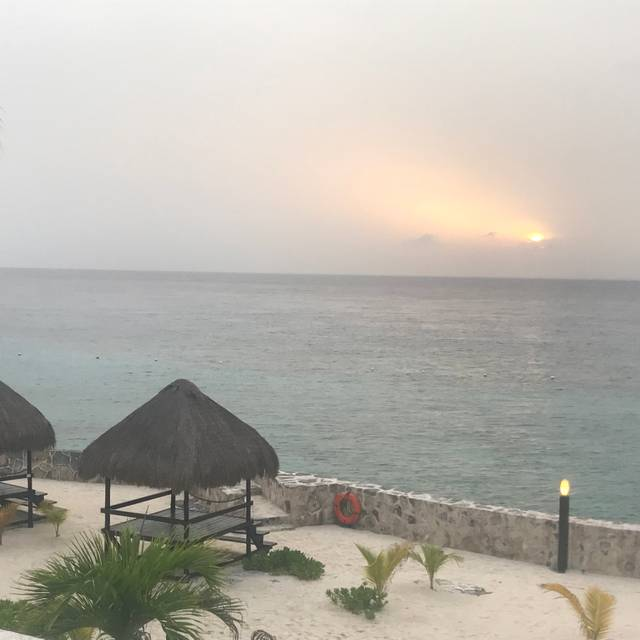 Buccanos at Night, Cozumel, ROO