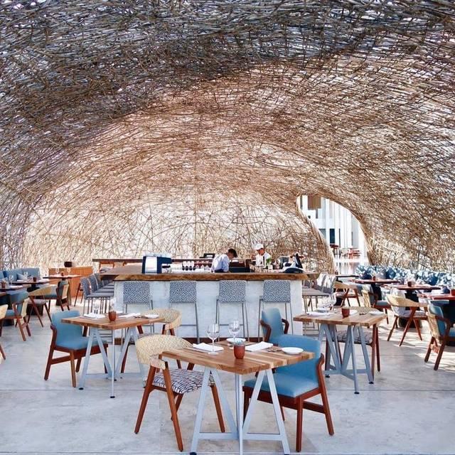 Nido - Nido Cevicheria and Bar, San José del Cabo, BCS