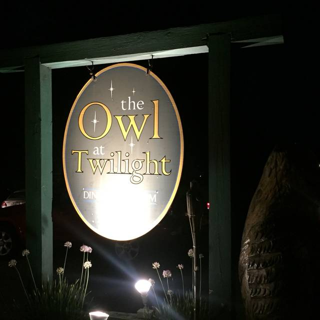 The Owl at Twilight, Olmstedville, NY