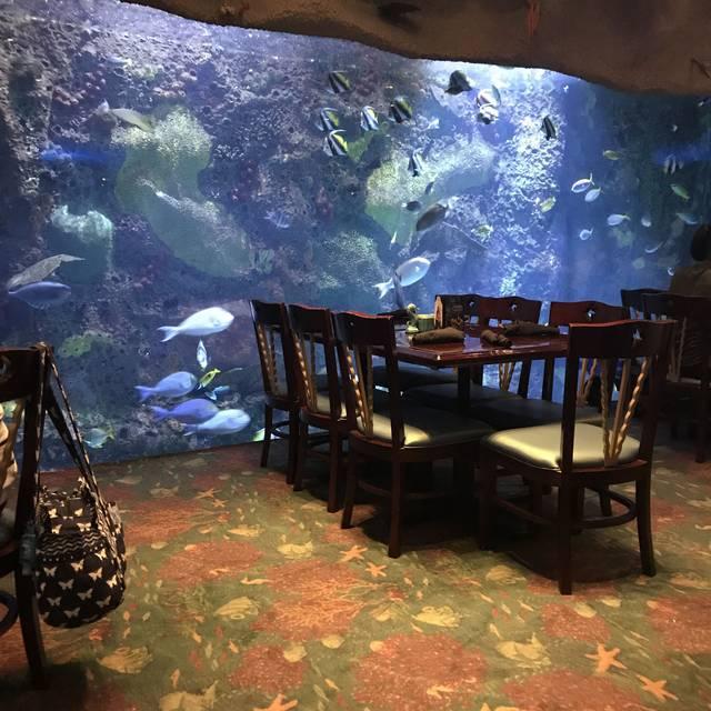 Aquarium Restaurant Downtown Denver Co