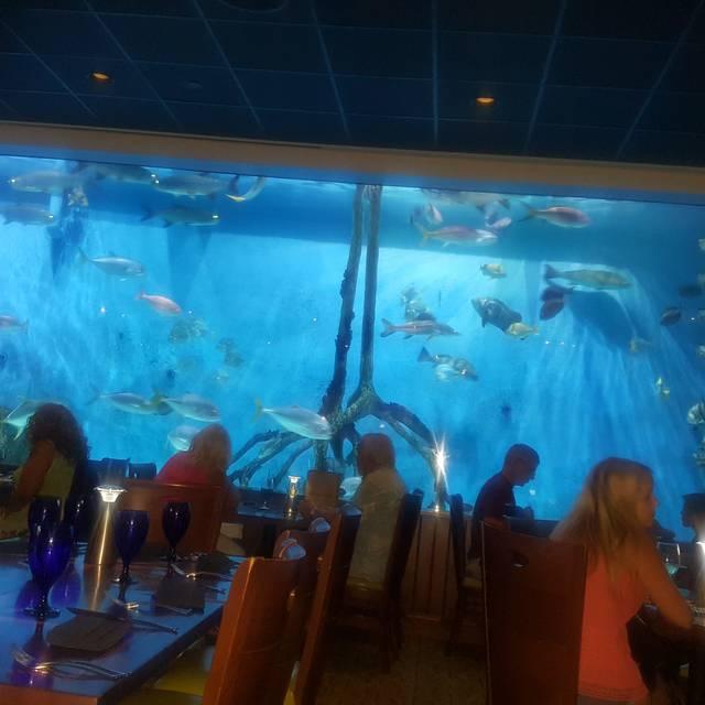 RumFish Grill, St. Pete Beach, FL