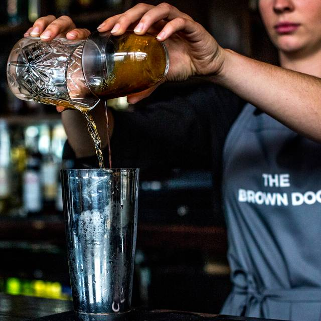 Gallery - The Brown Dog, London