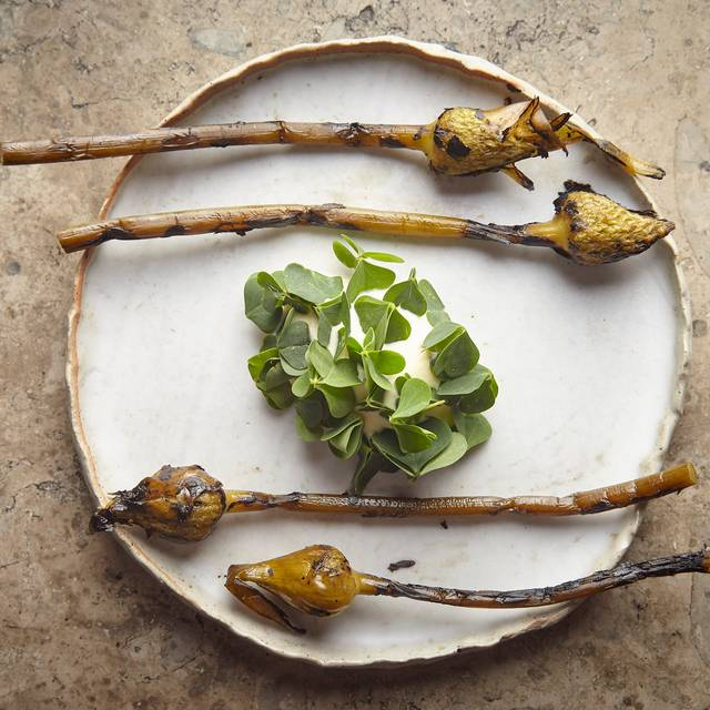Grilled Garlic Flower Buds, Charred Kelp - Harvest, Newrybar, AU-NSW
