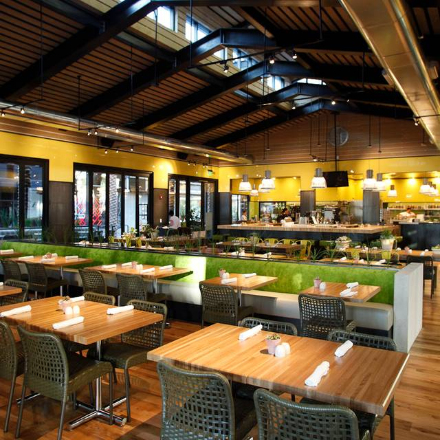 Scottsdale Interior - True Food Kitchen - Scottsdale, Scottsdale, AZ