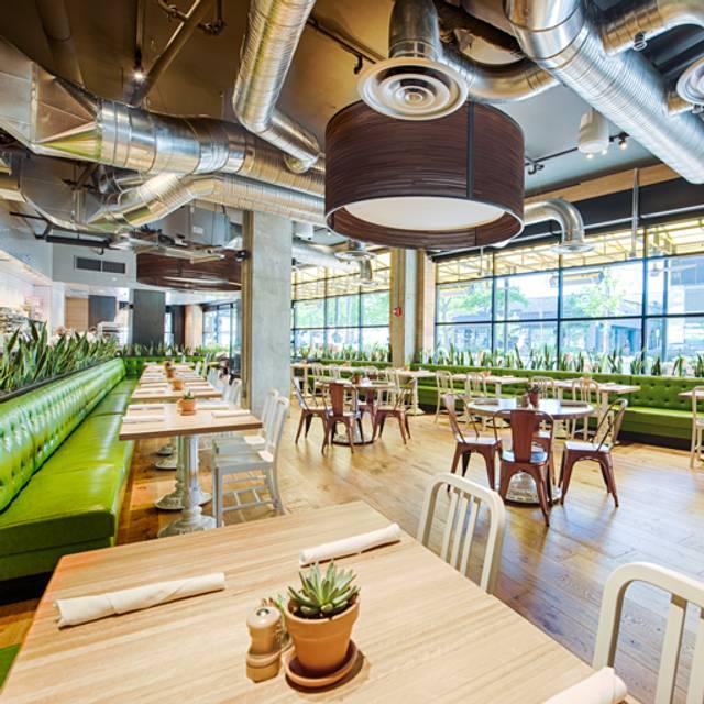 Bethesda Interior  - True Food Kitchen - Bethesda, Bethesda, MD