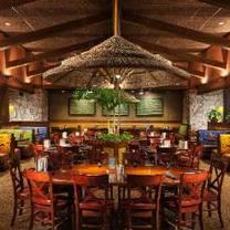 photo of bahama breeze - jacksonville - st. johns town center restaurant