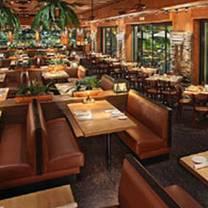 photo of bimini twist restaurant