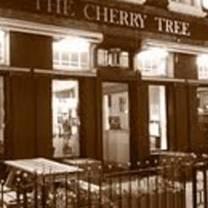 the cherry treeのプロフィール画像