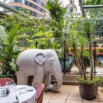 photo of the ivy city garden restaurant