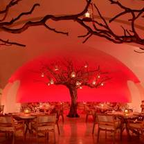 photo of arbol at las ventanas restaurant