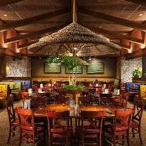 photo of bahama breeze - brandon - brandon mall restaurant
