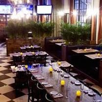 photo of aoa bar & grill restaurant