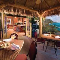 photo of monkey cat restaurant
