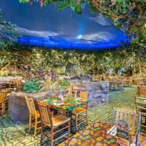 rainforest cafe - chicago gurneeのプロフィール画像