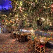 photo of rainforest cafe - sawgrass mills restaurant