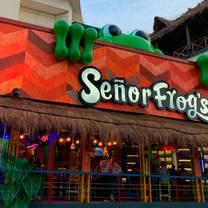 foto de restaurante señor frog's cancun