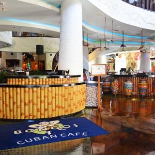 Bongos Cuban Cafe Lake Buena Vista Fl