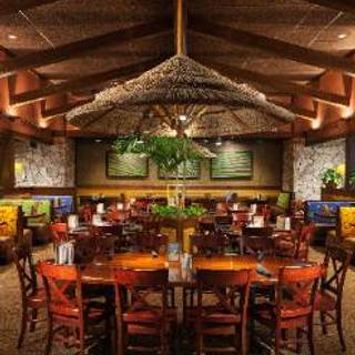 Bahama Breeze - Tom's River
