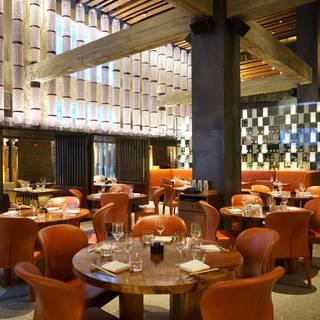 Zuma Japanese Restaurant - NY