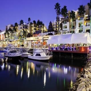Baja Lobster Co. - Hotel Marina Fiesta Resort & Spa