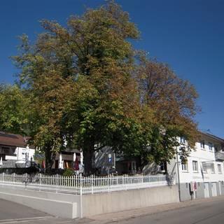 Gasthaus zum Uhlberg