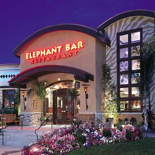 Elephant bar arapahoe