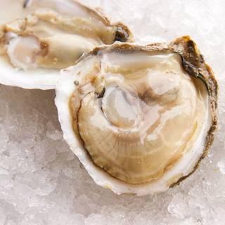 Fresh Oysters - Paris Bistro - Chestnut Hill, Philadelphia, PA