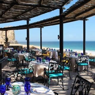 Best Restaurants In Cabo San Lucas Opentable