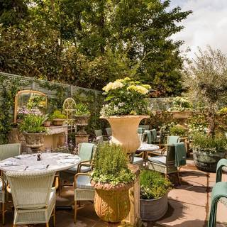 The Ivy Marlow Garden