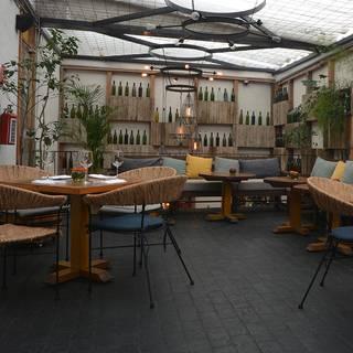 Salicornia, Placeres de Ensenada