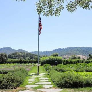 Flavors of Yountville - a Culinary Tour of Yountville