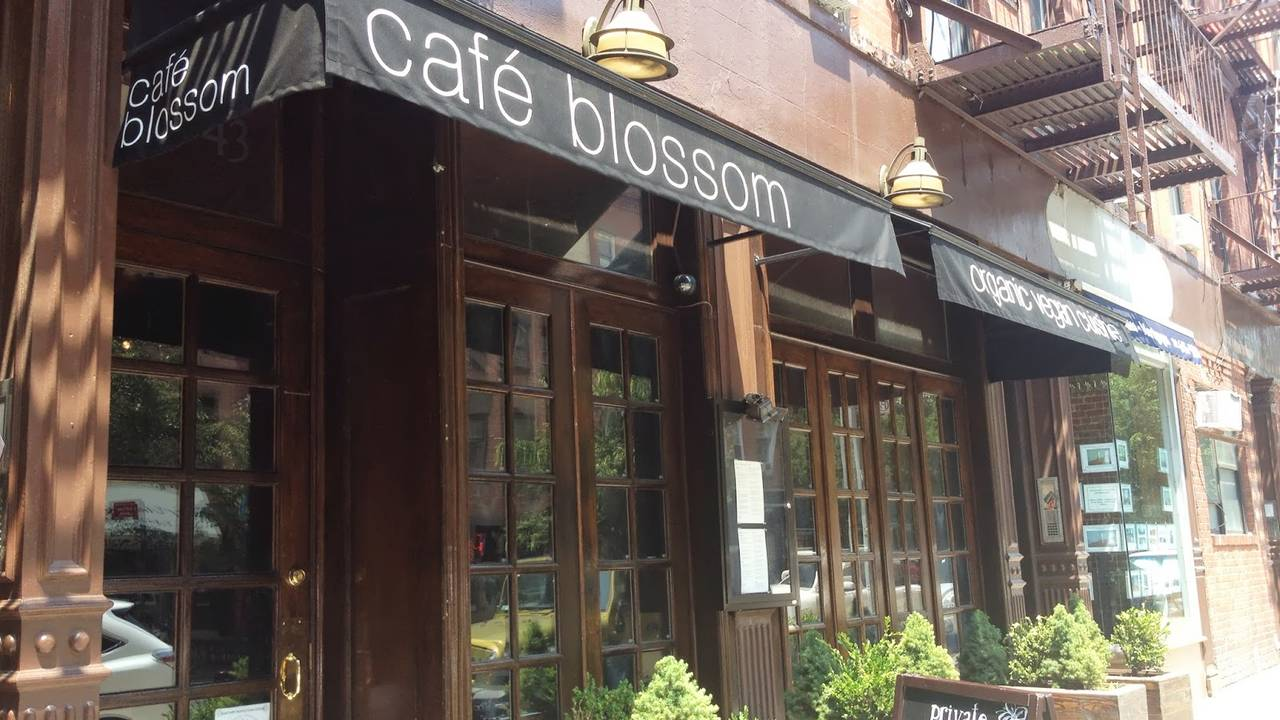 Urban Vegan Kitchen (a.k.a. Blossom On Carmine) Restaurant   New York, NY |  OpenTable