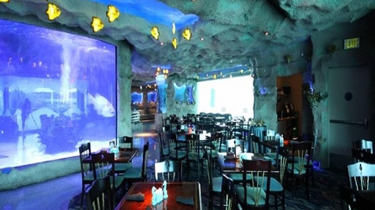 Downtown Aquarium Restaurant Houston Tx Opentable
