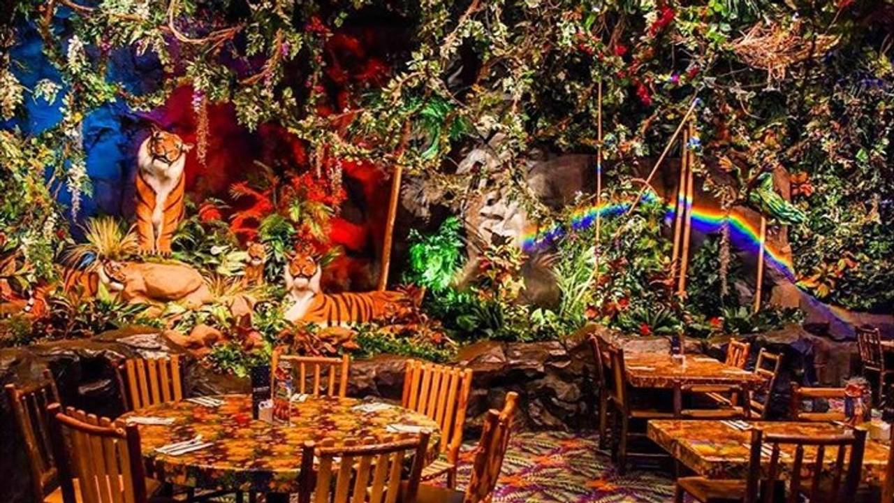 Rainforest Cafe - Chicago Woodfield Restaurant - Schaumburg
