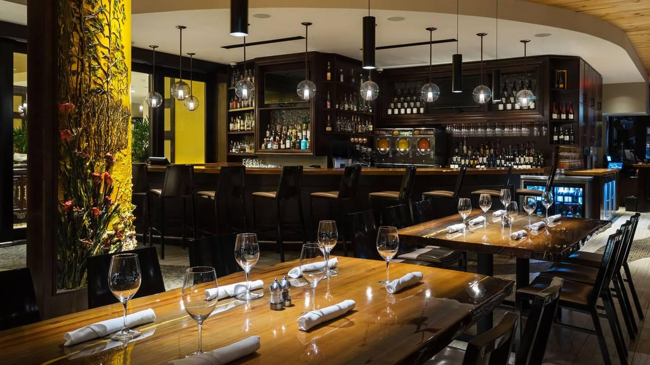 10 Restaurants Near Hilton New Orleans St Charles Avenue Opentable