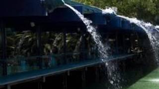 Anthony's Fish Grotto - La Mesa