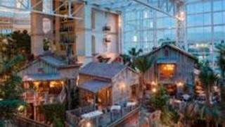 Old Hickory Steakhouse-Gaylord Palms Resort