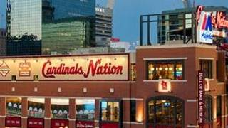 Cardinals Nation