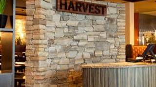 Harvest Seasonal Grill & Wine Bar – Susquehanna Valley