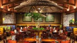 Bahama Breeze - Cherry Hill - Cherry Hill Mall
