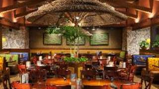 Bahama Breeze - Woodbridge - Woodbridge Center