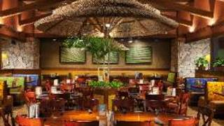 Bahama Breeze - Woodbridge - Potomac Mills